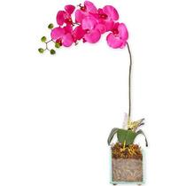 Arranjo Floral - Orquídea Rosa-choque De Mônaco