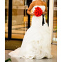 Vestido De Noiva Vera Wang - Coleção White By Vera Wang