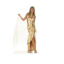 Fantasia Cleópatra Ouro Importada Tam. M ( 38 A 40)