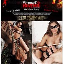 Filmes Shemale Revenge Bdsm