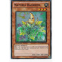 Naturia Ragweed Ha04-en050 Super Rare - Hidden Arsenal 4