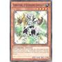 Yu-gi-oh Terratigre, O Guerreiro Edificado - Comum