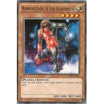 Yu-gi-oh Homunculos, O Ser Alquimico - Comum