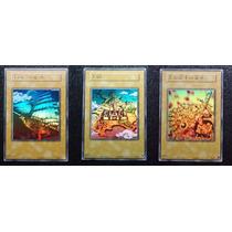 Yugioh Combo Reino Dos Duelistas 3x Cartas Originais Konami!