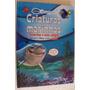 Livro Criaturas Marinhas Tubarões E Seus Amigos