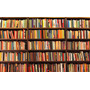 Lote 50 Livros Diversos Para Sebo Biblioteca Leitores Geral