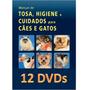 Curso 12 Dvds Banho E Tosa Para Cães E Gatos 55 Horas