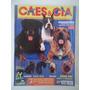 Cães & Cia #276 Com Os Posters Do Pug E Akita