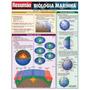 Resumão Biologia Marinha Barros, Fischer E Associados