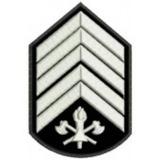Divisa 1° Sargento  bordada - CBMMG - PAR