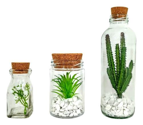3 Mini Suculentas + Potes Vidro = Decoracao Casa Banheiro Original