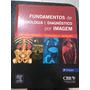 Fundamentos De Radiologia E Diagnostico Por Imagem 2 Edição