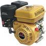 Motor Bfg 4t 6, 5 C/ Sensor Oleo Buffalo Buffalo