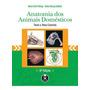 Anatomia Dos Animais Domesticos Artmed