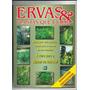 Ervas E Plantas Que Curam Ed 1 Revista