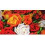 Apostila Flores Em E.v.a Para Downloads