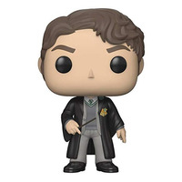 Tom Riddle Pop Funko #60 - Harry Potter - Series 5