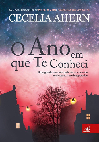 Livro O Ano Em Que Eu Te Conheci Mesma Autora De Ps Eu T Amo Original
