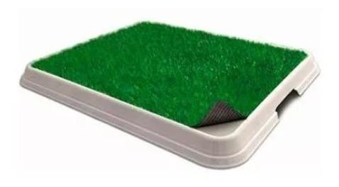 Sanitário Higiênico Pet Injet Xixi Green Premium Original