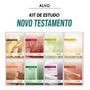 Kit 8 Livros Programa De Estudo Bíblico Novo Testamento