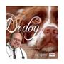 Dr. Dog Audiolivro Como Escolher, Criar, Cuidar