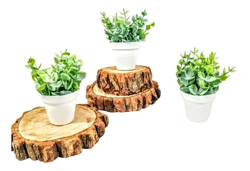 Kit 3 Suculentas Artificiais + Mini Vasinhos Decorativos Original