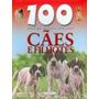 100 Coisas Que Você Deve Saber Sobre Cães E Filhotes