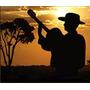 180 Músicas Cifradas P/ Viola Caipira Download