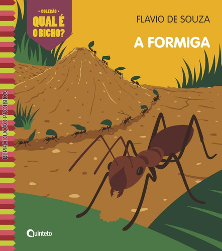 Livro A Formiga - Flavio De Souza (quinteto) Original