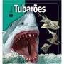 Livro Capa Dura Em Foco Tubarões Ciranda Cultural