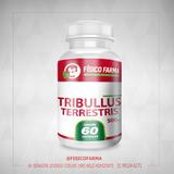Tribulus Terrestris 500mg 60cáps