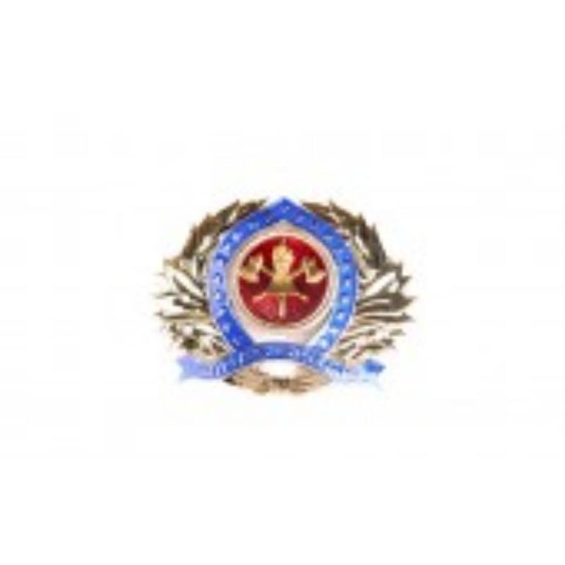 Distintivo Metal boina Oficial - CBMMG