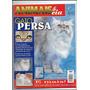 Animais E Cia Revista Ed 28 Gato Persa