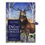 Cartas Xamânicas & The Druid Animal Oracle Com Tradução