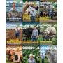 Revista Globo Rural Vários Exemplares Consulte Valor Unidade