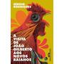 A Visita De João Gilberto Aos Novos Baianos Sérgio Rodrigues