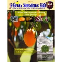 e-Book Subsídios EBD Vol 7