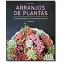 Arranjos Florais: 50 Pequenos Jardins Em Vasos Para Sua Casa